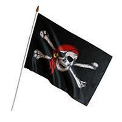 Пиратский флаг 45х30 см